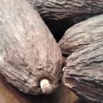 Kakaofrukt