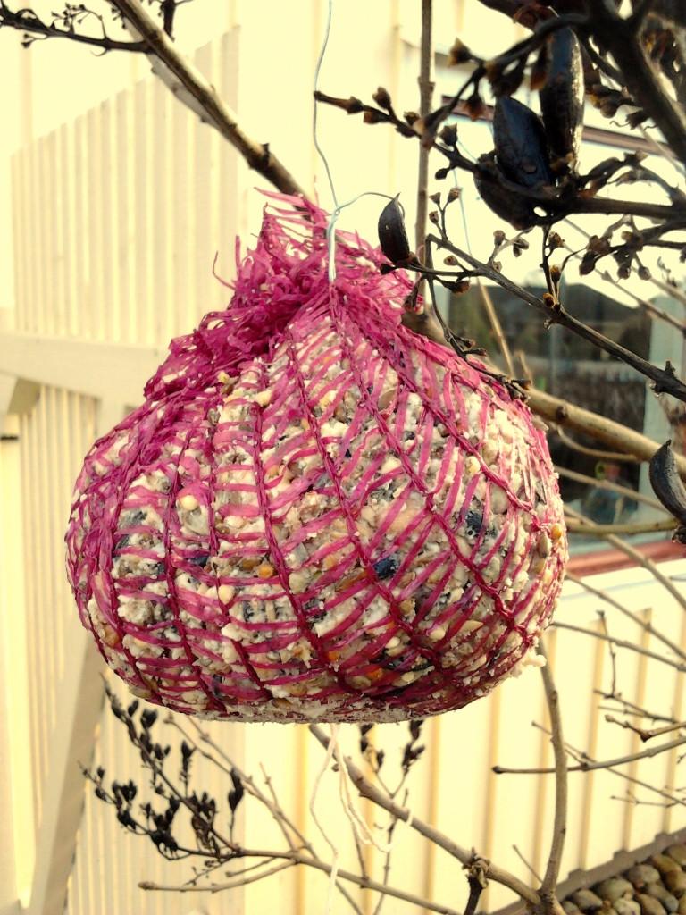 fågelboll
